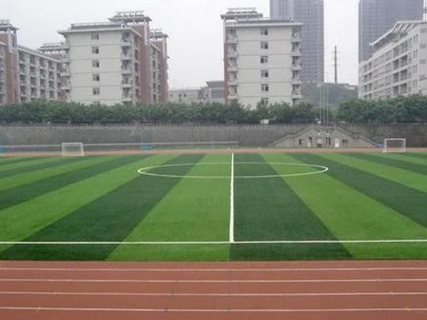 重慶南丁衛生職業學校的教學質量好不好